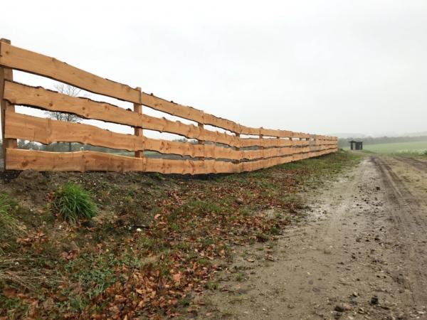 Plankehegn i douglas